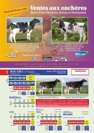 Catalogue de la vente Prim'Holstein - Web-agri