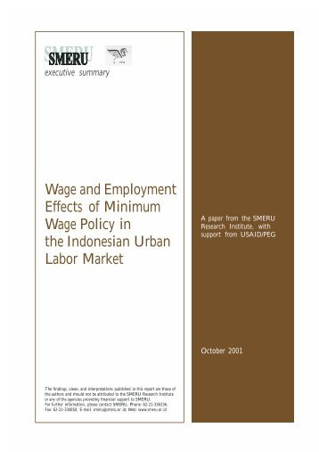 Wage and Employment Effects of Minimum Wage Policy in the ...