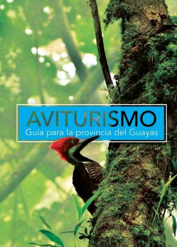 Guia de Aviturismo - Guayas