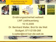 Bernhard Walter, Brot für die Welt
