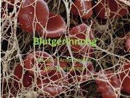 Blutgerinnung - IG-Nephrologie