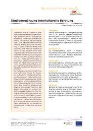Studienergänzung Interkulturelle Beratung - Otto Benecke Stiftung eV