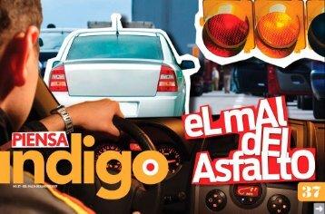 índigo - Reporte Indigo