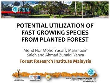 Paper 10 (International Conference 2013) - Sarawak Timber ...