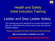 Safe Use of Ladders and Steps