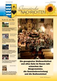 (3,24 MB) - .PDF - Weyregg am Attersee