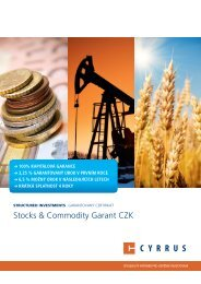 Stocks & Commodity Garant CZK - Cyrrus