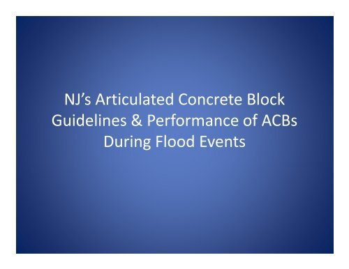 Articulated Concrete Block Guidelines and Performance of ACB's ...