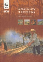 Global Review of Forest Fires