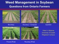 Weed Management in Soybean - Ridgetown Campus - University of ...
