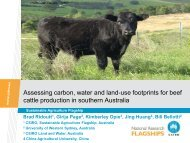 Assessing carbon, water and land-use footprints for beef cattle ... - Inra