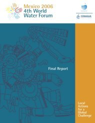 Final Report - World Water Council