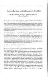 Some reallocations of Stenella species to Zasmidium - Cbs - KNAW