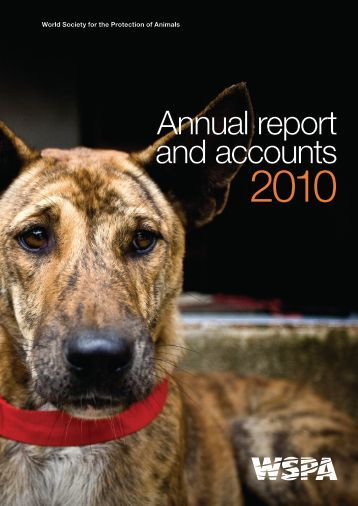 Annual report and accounts - WSPA