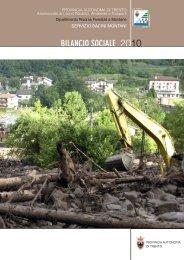 file pdf BILSOC2010 3789 KB - Servizio Bacini montani - Provincia ...