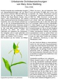 Unbekannte Orchideenzeichnungen von Mary Anne Stebbing