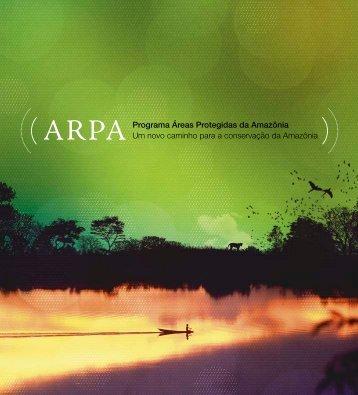 Um novo caminho para a conservação da Amazônia - Arpa