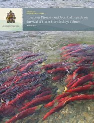 Infectious diseases and potential impacts on survival of Fraser River ...