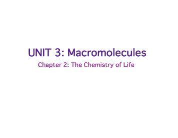 Macromolecules: Review Sheet - nnhsbergbio
