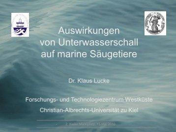 Auswirkungen von Unterwasserschall auf marine Säugetiere
