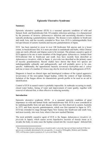 Epizootic ulcerative syndrome (EUS) - Library