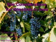 Site Considerations for Vineyards in Iowa - Viticulture Iowa State ...