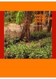 pdf [ 2.1MB ] - Anglo American