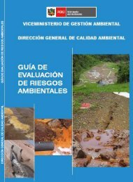 Guía de evaluación de riesgos ambientales - CDAM - Ministerio del ...