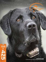 SportDOG WetlandHunter 425 Manual