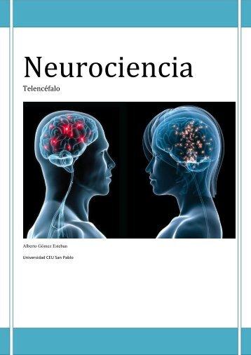 Neurociencia. Telencefalo.pdf - VeoApuntes.com