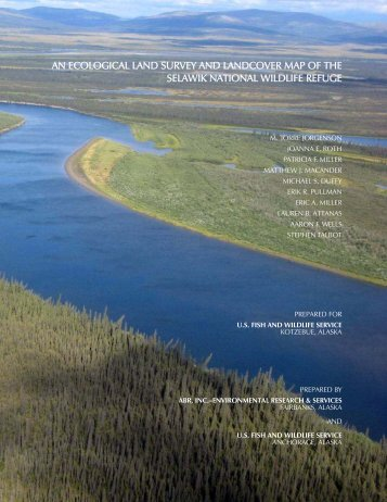 an ecological land survey and landcover map of the selawik national ...