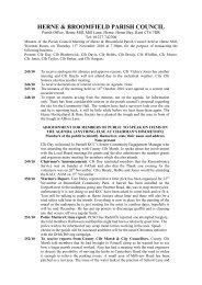 Council Minutes 11 November 2010.pdf - Herne & Broomfield Parish ...