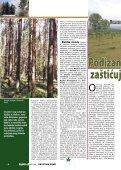 Više od polovice »Sjevernog Psunja – Javorovice - Hrvatske šume - Page 6