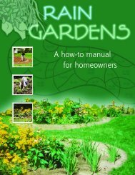 Rain Gardens - A how-to manual for homeowners - The Learning ...