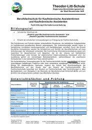 Infoblatt Fachrichtung Informationverarbeitung - Theodor-Litt-Schule