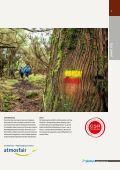 Madeira, Azoren, Portugal, Kapverden: Reisen mit picotours - Seite 5