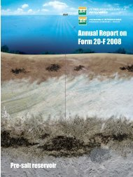 Annual Report on Form 20-F 2008 - Petrobras