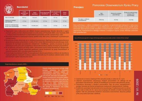 Raport VI/2009