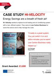 Green Grant - Hi- Velocity - Low Carbon Business