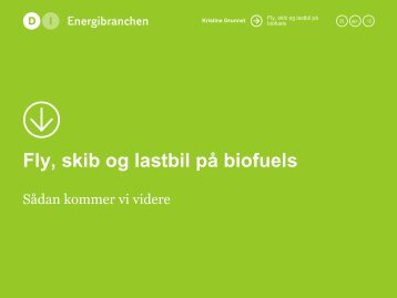 Fly, skib og lastbil på biofuels - Bioenergi