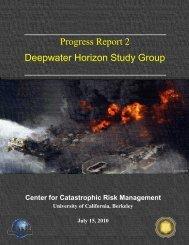 Progress Report 2 Deepwater Horizon Study Group - Center for ...