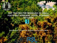 ray tracing for modeling of small footprint airborne laser scanning ...