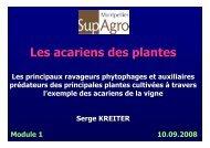 Présentation des acariens Les acariens phytophages Les ...