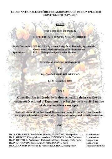 Contribution à l'étude de la domestication de la variété de cacaoyer ...