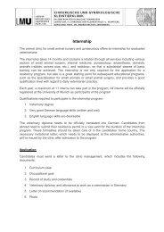 Internship english - final version - Chirurgische und gynäkologische ...