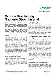 Sauberer Strom für alle! - Greenpeace-Gruppe Stuttgart