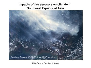 Impacts of fire aerosols on climate in Southeast Equatorial Asia