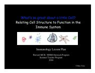 What's so great about a little Cell? - Life Sciences Outreach Program