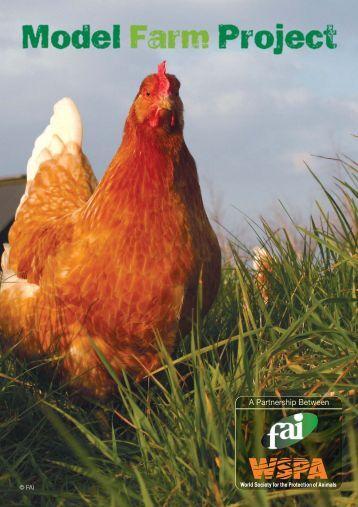 Model Farm Project:Layout 1 - FAO