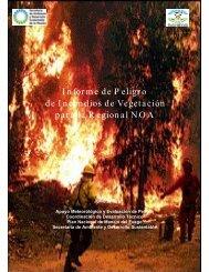 Informe de P eligro de Incendios de Vegetación para la R egional ...